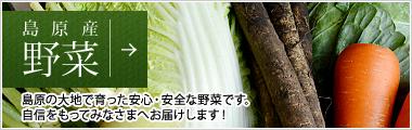 島原産野菜