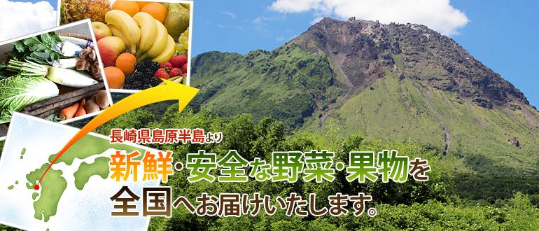 長崎県島原半島より新鮮・安全な野菜・果物を全国へお届けいたします。